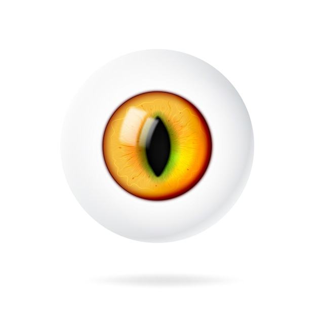 Realistic 3d eye of an animal or cat. Premium Vector