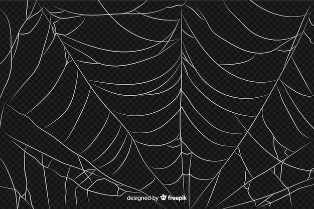 Realistic abstract design of  spider web Free Vector