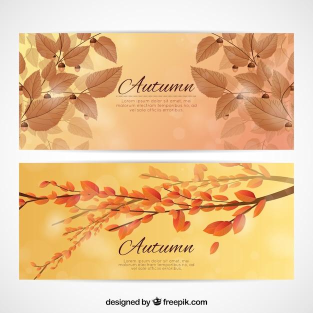 잎과 가지와 현실적인가 카드 무료 벡터