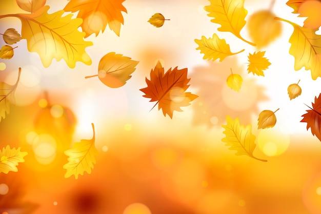 Realistic autumn leaves background Free Vector