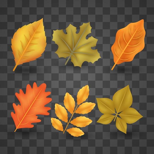 Реалистичная коллекция осенних листьев Бесплатные векторы