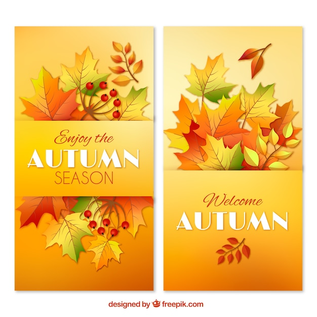 Realistic autumnal banners with warm colors