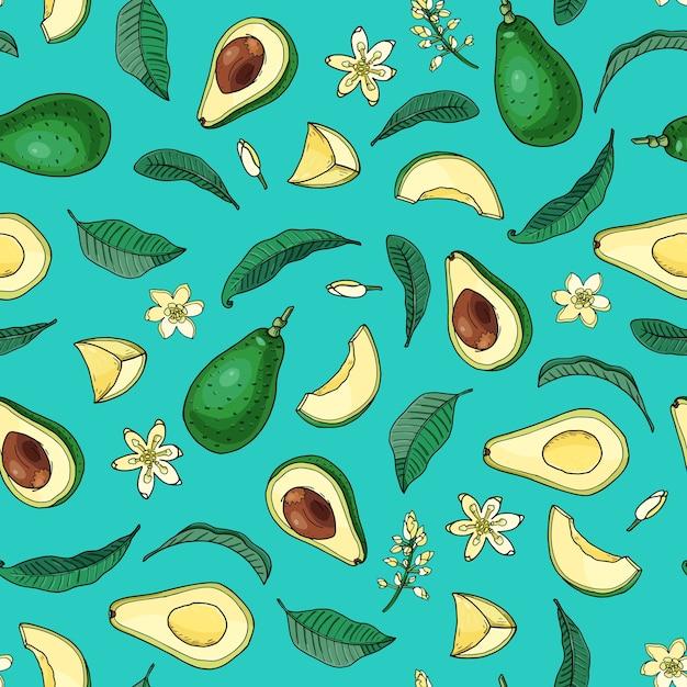 リアルなアボカド。シームレスなパターン。夏のエキゾチックな食べ物。漫画全体、葉、花と半分の果物。手描きイラスト。自然な有機野菜。背景色が水色にスケッチします。 Premiumベクター