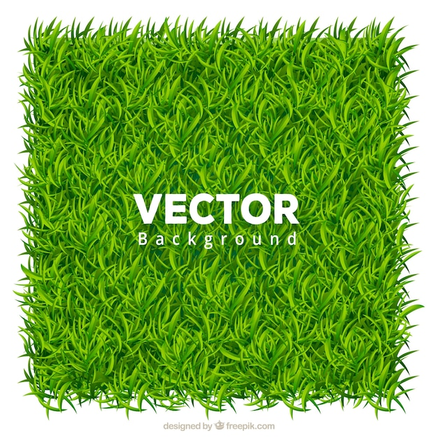 Realistic background of green grass Free Vector