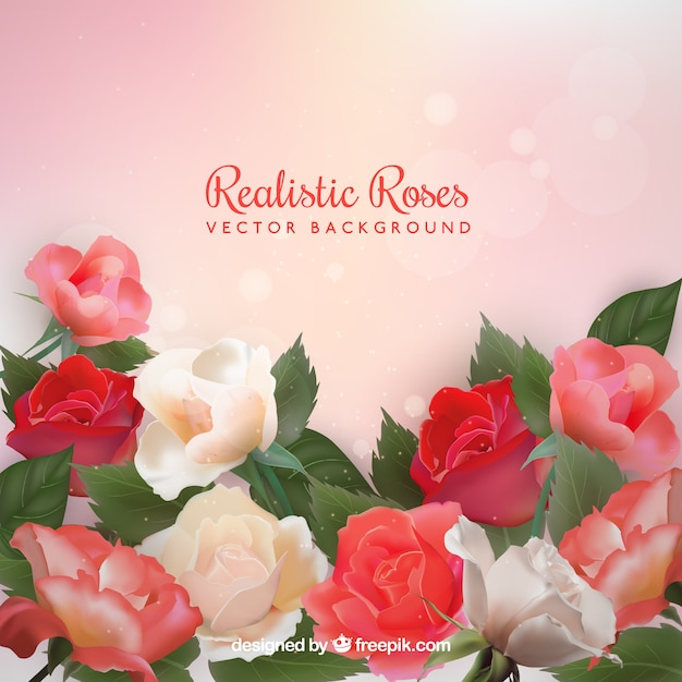 Realistic background of roses with bokeh\ effect