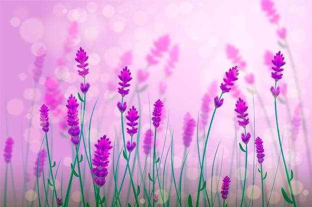 Realistic blurred spring background Premium Vector