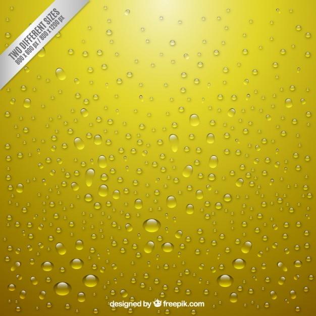 Realistic bubbles Free Vector