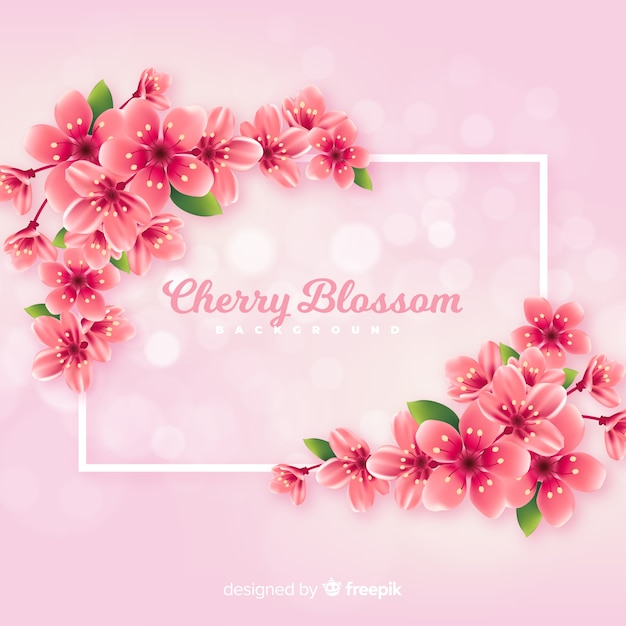 Realistic cherry blossom background Free Vector