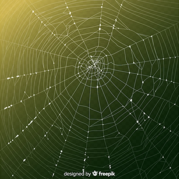 Realistic cobweb with gradient green background Free Vector