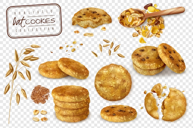 Realistic collection of oat cookies whole and halves isolated on transparent background   illustration Free Vector