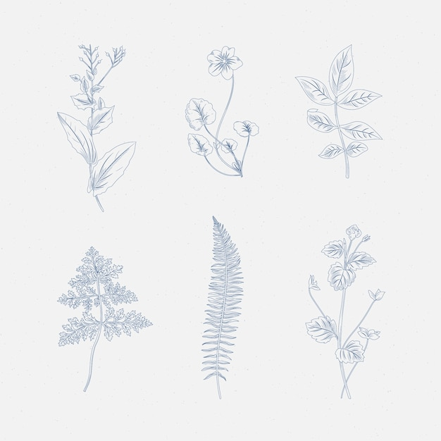 Реалистичный рисунок из трав и полевых цветов Бесплатные векторы