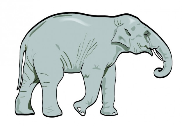 Realistic elephant walking icon vector Free Vector