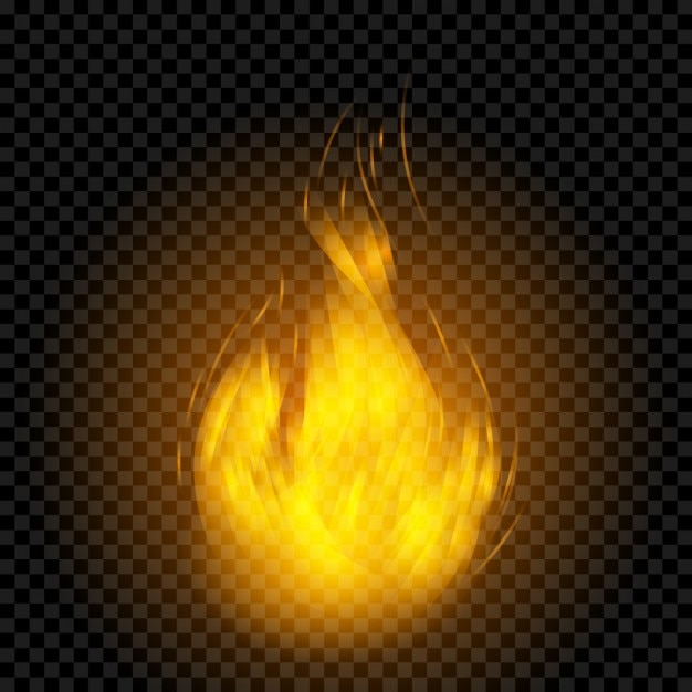 Realistic flame effect Vector | Free Download