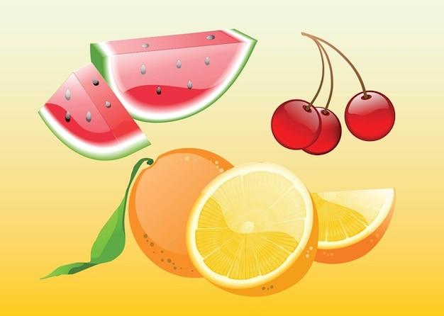 Realistic Fruit Vectors Free Vector