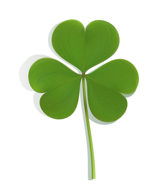 Realistic green leaf clover on white Free Vector