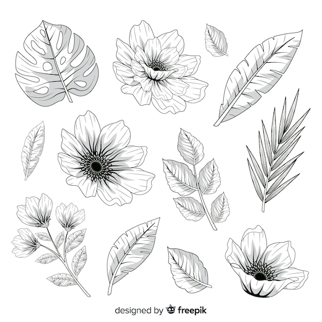 Realistic hand drawn flowers and leaves Free Vector