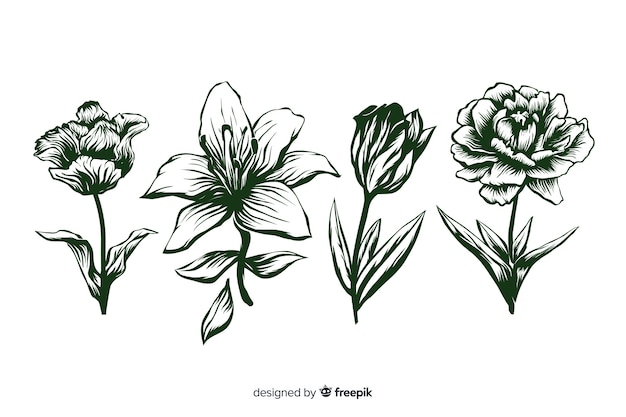 Realistic hand drawn flowers with stems and leaves in green
