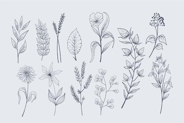 Реалистичные рисованные травы и полевые цветы Premium векторы