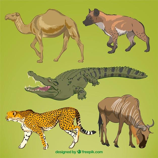 Realistic hand drawn wild animals