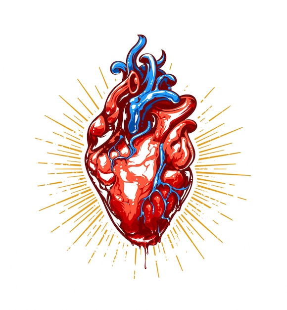Realistic heart illustration Free Vector