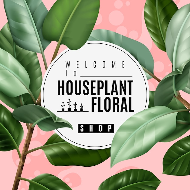 Realistic house plant poster Free Vector