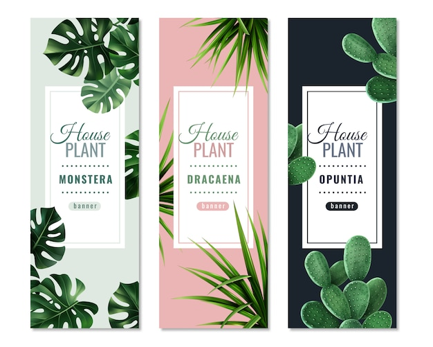 Realistic house plants vertical banners Free Vector