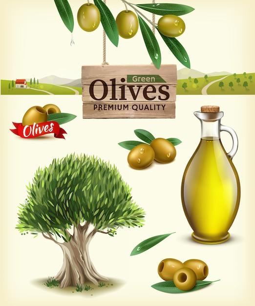 Premium Vector Realistic Illustration Of Fruit Olives Olive Oil Olive Branch Olive Tree Olive Farm Label Of Green Olives With Realistic Olive Branch Against The Backdrop Of Olive Plantations