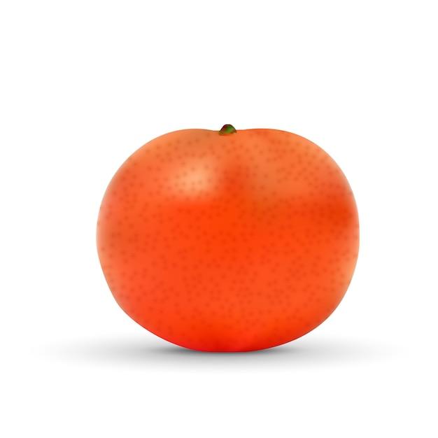 Realistic mandarin isolated on white Premium Vector