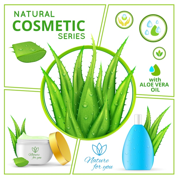 アロエベラの植物と健康的なスキンケアクリームと顔用の液体のパッケージを含む現実的な自然化粧品の組成物 無料ベクター
