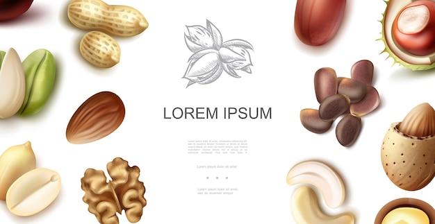Реалистичная концепция натуральных орехов с кешью, грецкими орехами, каштанами, фисташками, миндальными орехами, арахисами, лесными орехами, пеканами, кедровыми орехами Бесплатные векторы