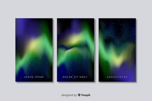 Realistic northern lights background Free Vector