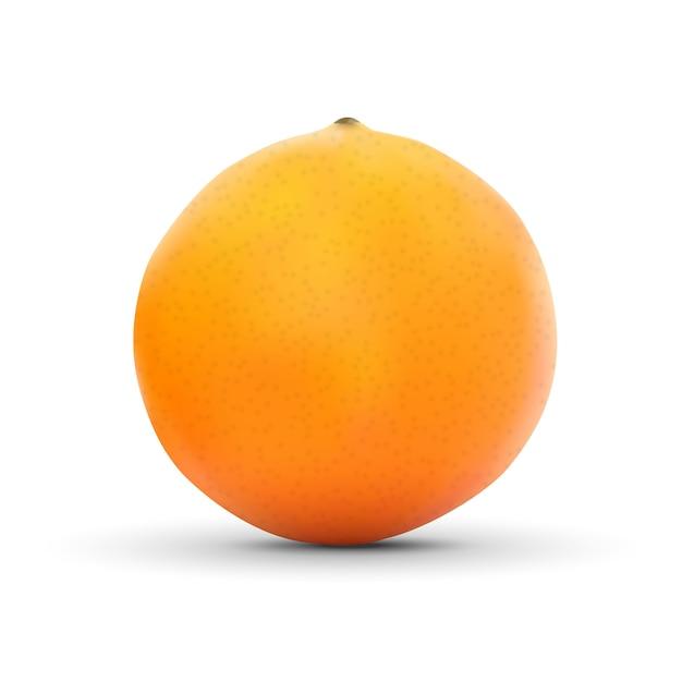 Realistic orange isolated on white Premium Vector