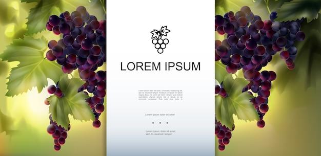 Modello realistico di uva fresca biologica Vettore gratuito