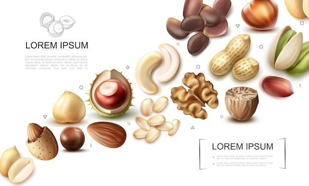 Реалистичная коллекция органических орехов с кешью, фисташками, каштанами, макадамией, мускатным орехом, грецким орехом, фундук, миндалем, арахисом, кедровыми орехами, бразильскими орехами Бесплатные векторы