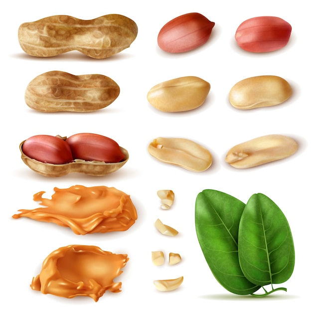 Realistic peanut set of isolated images of beans in shell with green leaves and peanut butter Free Vector