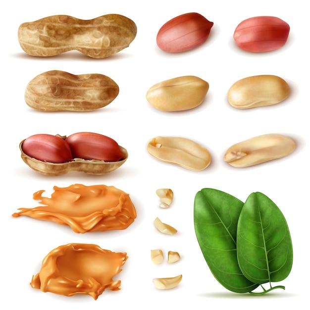 Реалистичный набор арахиса изолированных изображений бобов в оболочке с зелеными листьями и арахисовым маслом Бесплатные векторы