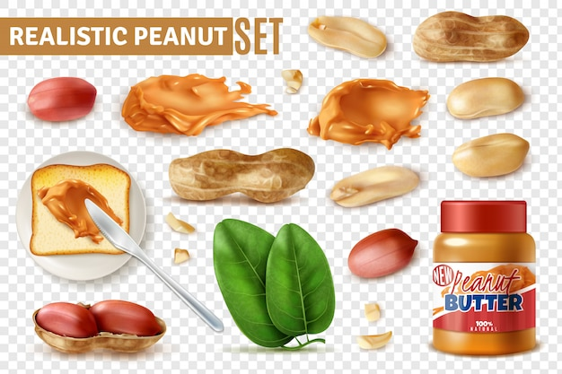 Realistic peanut on transparent  set with isolated arachis beans with shell and jar of butter Free Vector