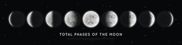 Realistic phases of the moon. Premium Vector
