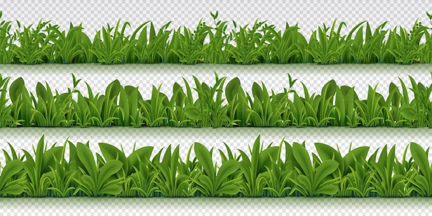 Realistic seamless grass border illustration Premium Vector