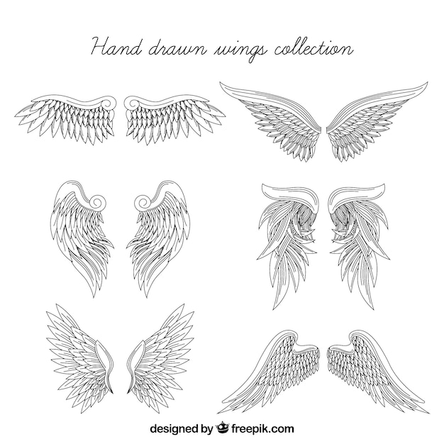 Realistic set of hand-drawn wings Free Vector