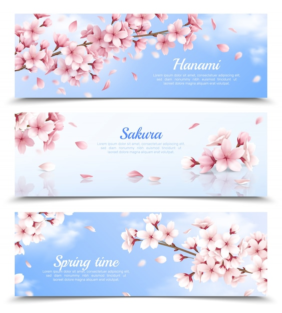 Realistic set of three horizontal banners with blossoming sakura flowers on blue sky background isolated illustration Free Vector