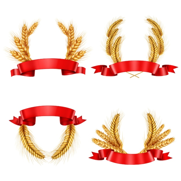 Realistic spikelet wreaths with ribbons Free Vector