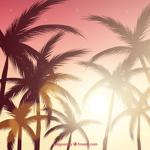 Realistic summer sunset with palm silhouettes Free Vector