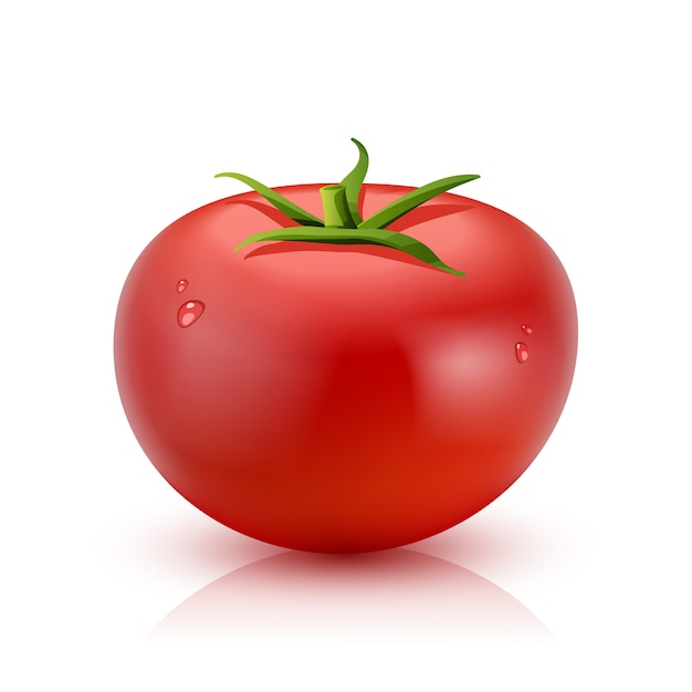 Realistic tomato isolated Free Vector