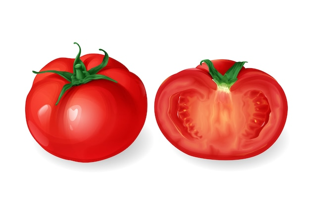 Realistic tomato, red round fresh vegetable whole and cut half.  Free Vector