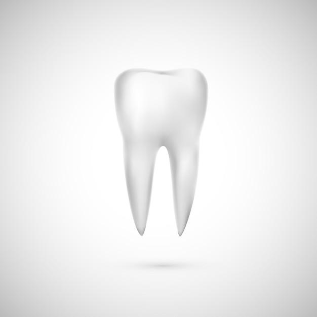 Realistic tooth illustration. dental care and teeth restoration. medicine icon. Premium Vector
