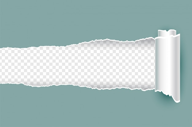 Realistic torn ripped paper with rolled edges Free Vector