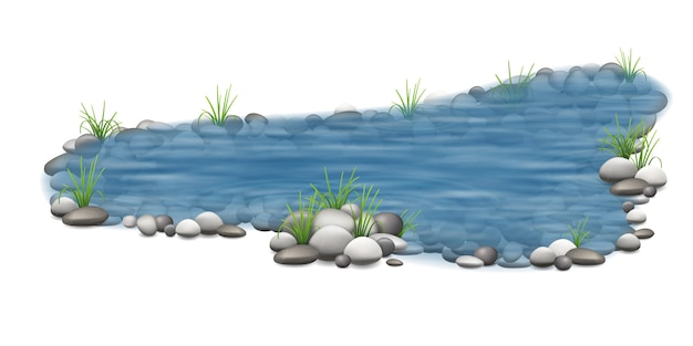 Realistic vector garden pond with stones on the bottom and grass on the shore. Premium Vector