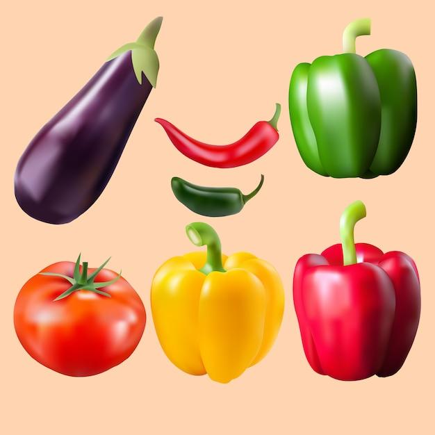 Realistic vector vegetables | Premium Vector