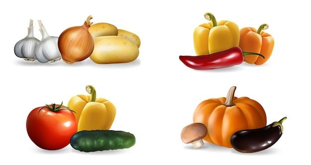 Набор реалистичные овощи. коллекция в стиле реализма, нарисованная перцем, тыквенным чесноком, помидором, огурцом, эко-питанием, веганским питанием или шаблоном меню вегетарианской еды. осенний сбор урожая иллюстрации. Premium векторы